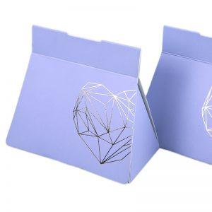 Paper Bag Shaped Apparel Boxes